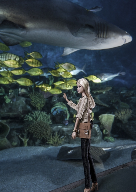 http://www.arihatzis.com/files/gimgs/th-34_Barbie-Aquarium_4583FLAT.jpg